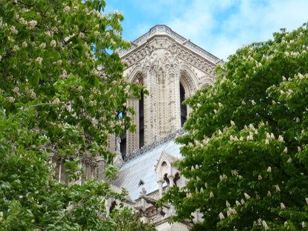 paris_2012_197