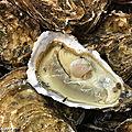Les huîtres reines de nos tables de fêtes de fin d'année !