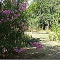 Jardin du sud