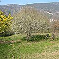 2015/04 piste des rochettes berre les alpes