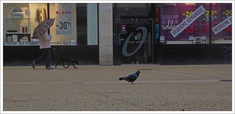 ville pigeon soldes 190114
