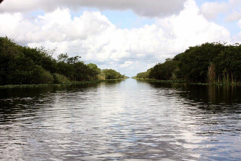 J24 - 21 juillet 2014 Everglades (108).JPG