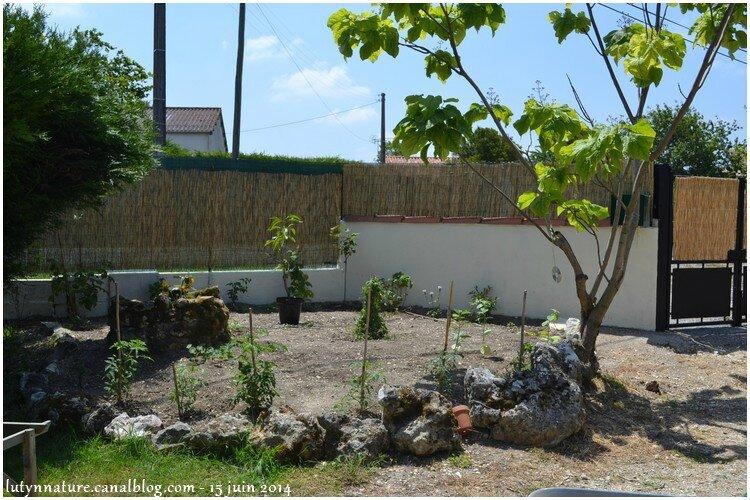jardin juin 1
