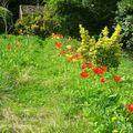 Un jardin qui cachait bien son jeu