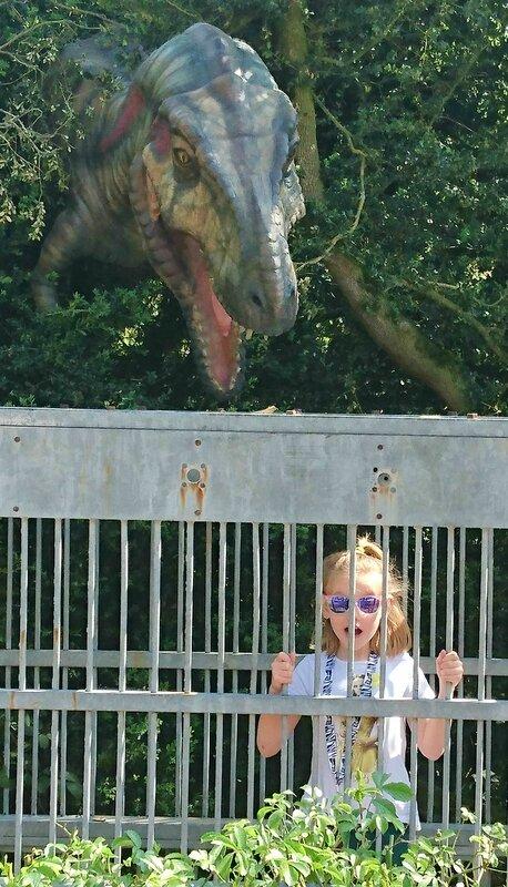 mamanprout_dinosaurezoothoiry (9)