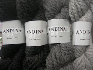 andina_4_echeveaux_gris