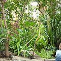 DAY 6 : Zoo de Central Park