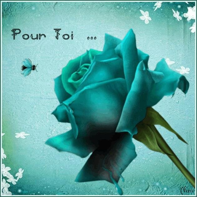 Belle Journee Et Tres Bon Week End A Tous Univers Des Artistes Du Monde