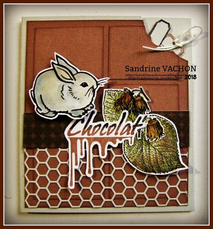 Chocolat DEFI 526 Sandrine VACHON (1)