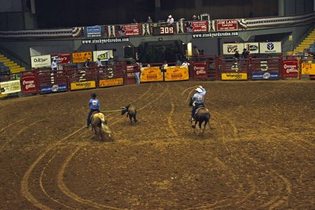 Rodeo_18