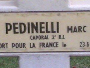 NDL_PEDNELLI_M