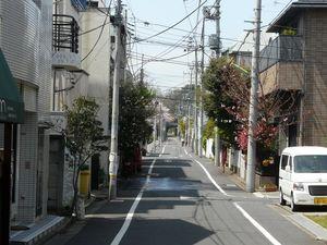 Canalblog_Tokyo03_11_Avril_2010_025