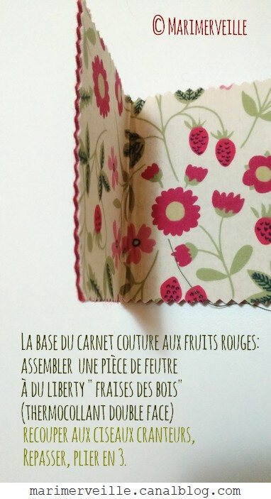 carnet fruits rouges marimerveille 1