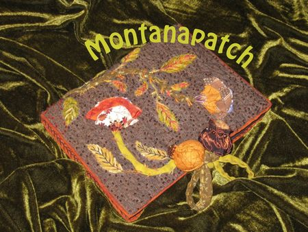 Montanapatch_cours