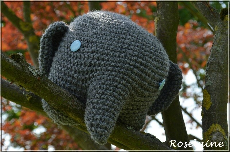 Roselaine Elephant 6