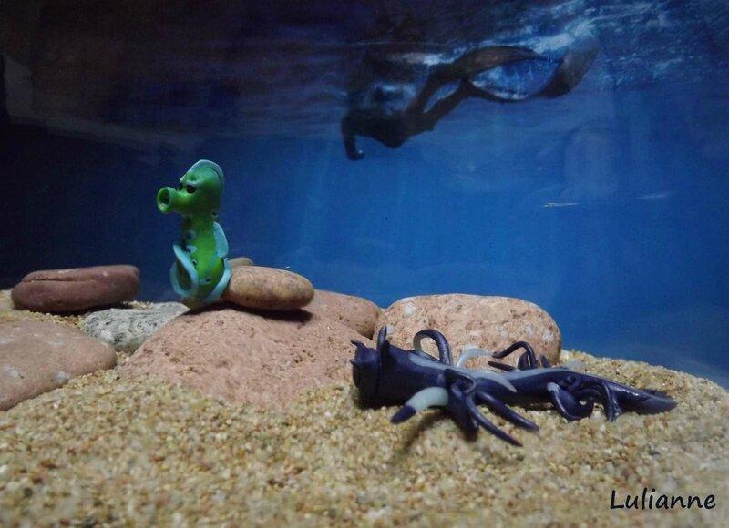 lulianne-4-aquarium
