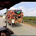 Cambodge Kep