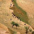 Trek au Maroc