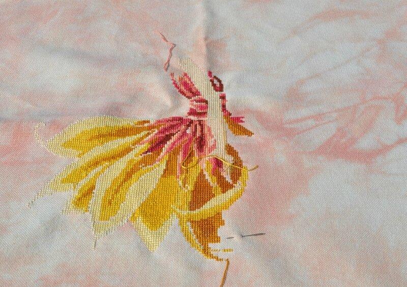 petal fairy 240515DSC_0074