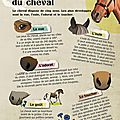05-KIT_PASSION_CHEVAL-9