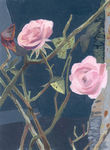 acry_roses_jardin_hugues