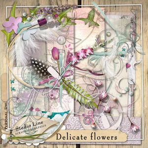 lalig_delicateflowersforDAM_preview