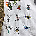 Enfin fini ... broderie insectes