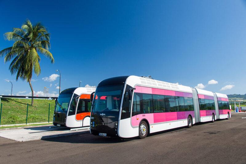 TCSP-Mozaik-bus2