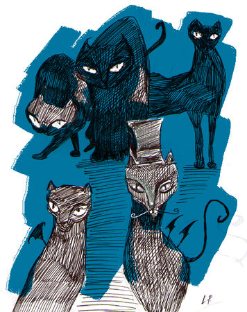 chats_noirs
