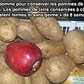 L astuce infaillible pour empêcher vos pommes de terre de germer