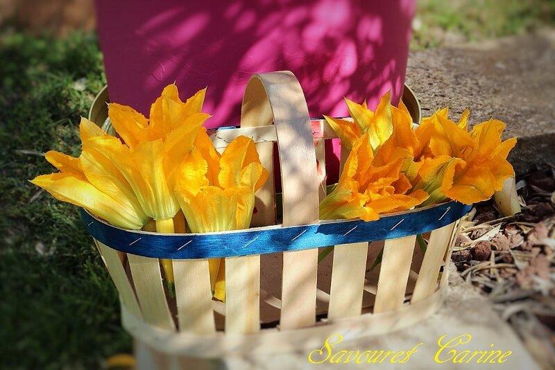 Fleurs_de_Courgettes_Panier_