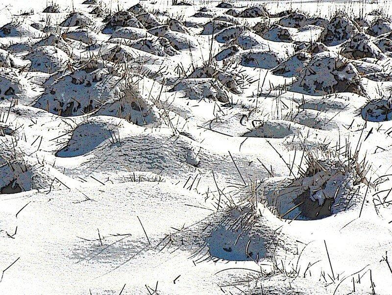village endormi sous la neige