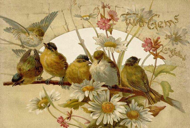 des oiseaux pour Estelle