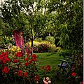 Windows-Live-Writer/jardin_D005/DSCF3886_thumb