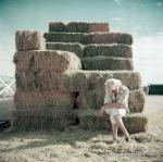 1954-12-AZ-Arizona-020-1