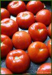 tomate_non_cuite