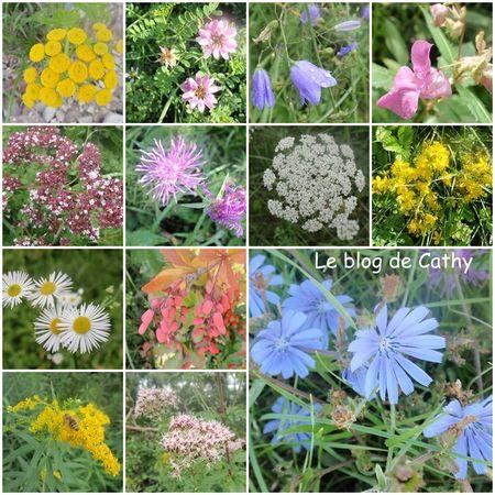 fleurs_Alsace
