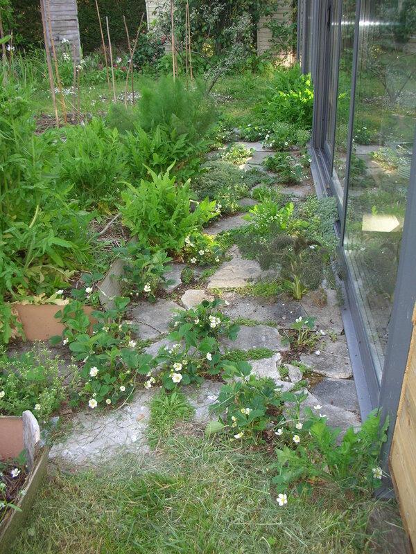 jardin15