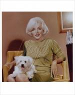 1961-beverly_hills_hotel-by_eric_skipsey-030-1-color1