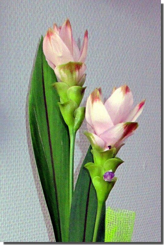 Montage floral 03-C