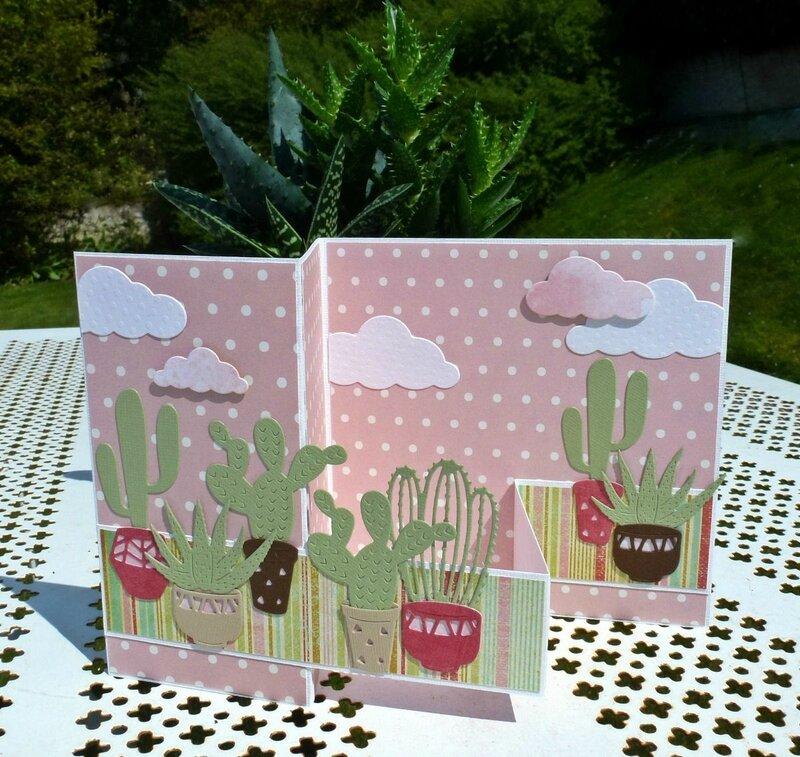 Carte-cactus3