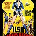 Ilsa-gardienne-du-harem