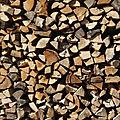 Nogent-le-républicain le 26 mars 1795 : bois pour l'atelier de salpêtre.