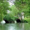 Ch.. comme Charente - le long de la charente - 01.05.08