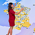 taniayoung02.2019_08_14_meteo20hFRANCE2