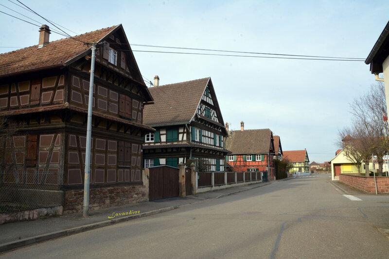 Hindisheim 02 19 (29)