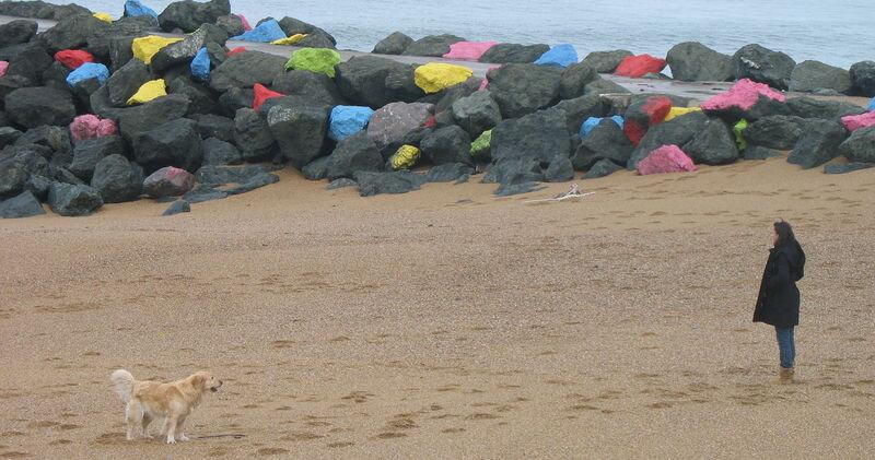 Anglet, plage et siensien