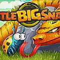 Jeu little big snake