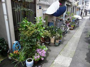 Canalblog_Tokyo03_13_Avril_2010_066