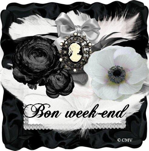 fleurs noires et blanche 1 bon week-end